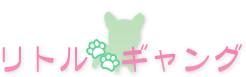 静岡県のブリーダー「リトルギャング」
